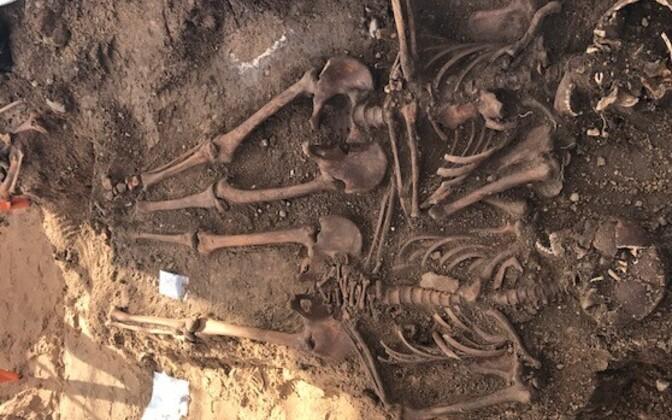 Nüüd algavas uuringus küsitakse, kuidas iidsetel inimestel läks ja millist elu nad elasid.