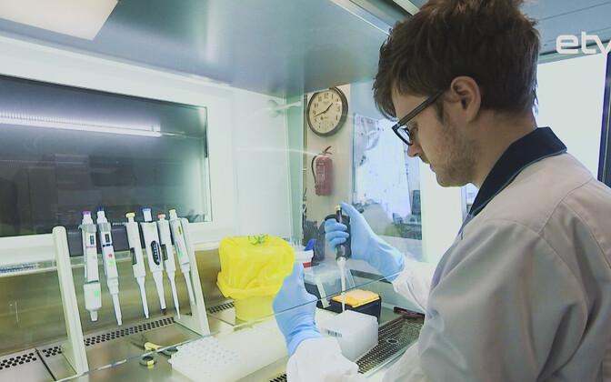 Тестирование на коронавирус.