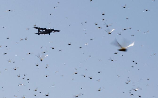 Pestitsiide pritsiv lennuk pildistatuna läbi tirtsuparve Keenias