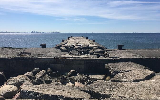 Противники планировки считают, что здание порта закроет панораму Старого города и отрицательно скажется на экосистеме.