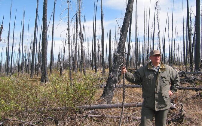 Kalev Jõgiste metsapõlengualal Alaskal.