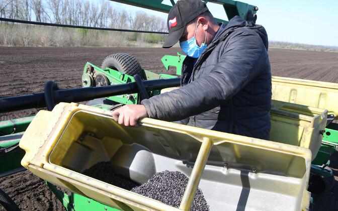 Põllutööline Ukrainas.