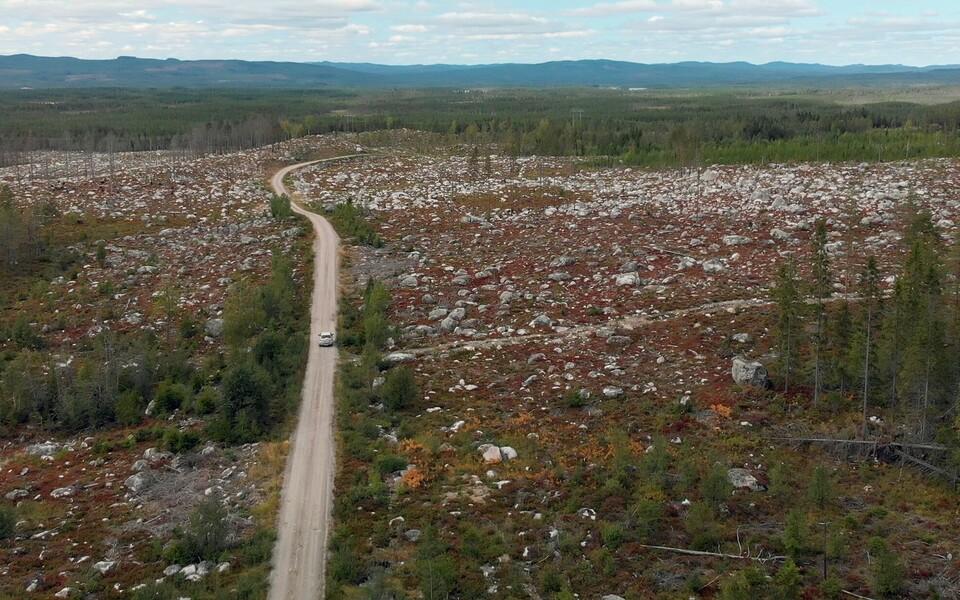 Lageraie - Euroopa hääbuvad metsad