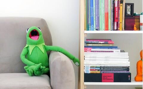 Kui keegi hangib alles nüüd, videolinkide ajastuks endale raamaturiiuli, siis kui kaua see peab kodus olema, et võitluskõlbulikuks saada?
