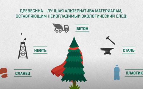 Древесина - лучшая альтернатива материалам, оставляющим экологический след.