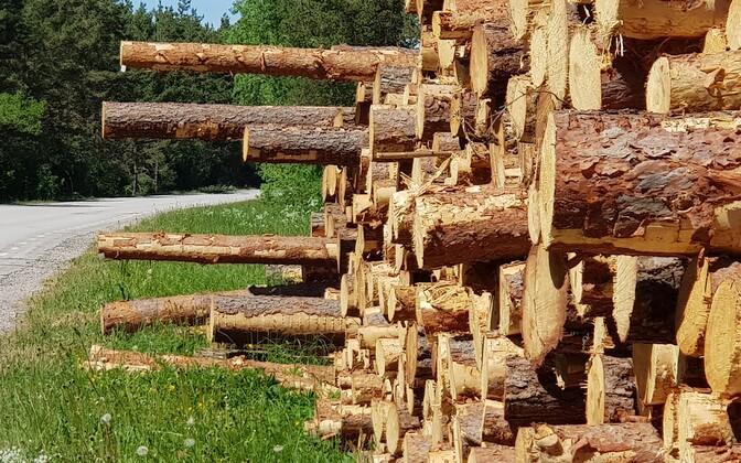 Timber industry.