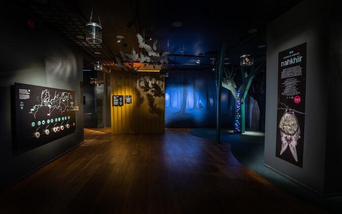 Eesti loodusmuuseumi näitus