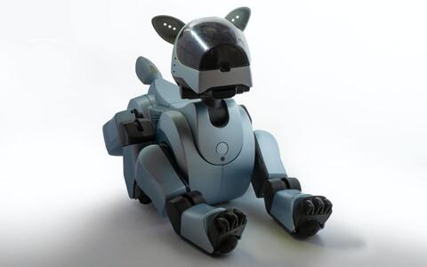 Robotkoer