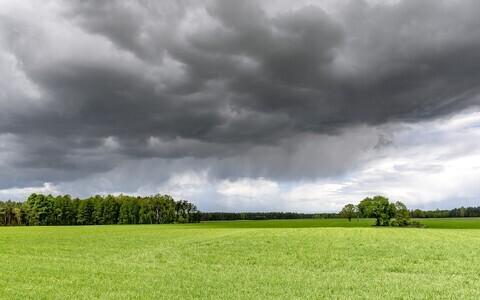 Синоптики не исключают дожди и грозу.
