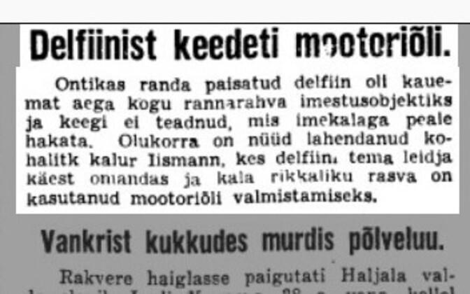 Газета Uus Eesti сообщила в 1939 году о печальной судьбе дельфина.
