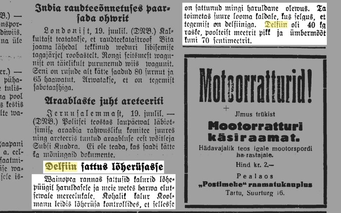 Daily Postimees reported on a dolphin in Vainupea in 1937.