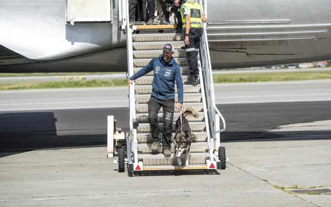 Thomas Wärner jõudis koos koertega lõpuks kodumaale tagasi.