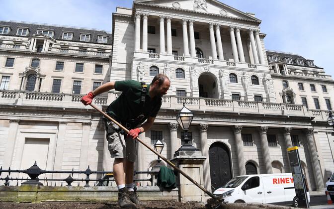 Aednik töötamas Inglise Panga peahoone ees.