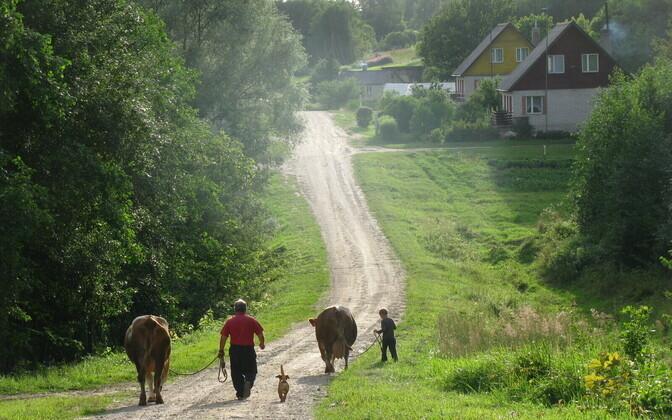 Eestimaal puhkamiseks tuleb majutus broneerida kiiresti ja arvestada vähemalt 800-eurose väljaminekuga