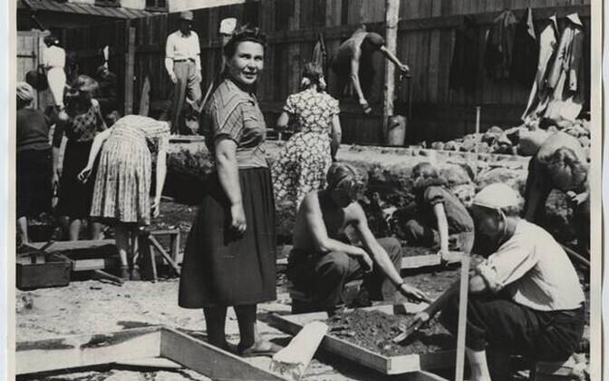 Arheoloogilised väljakaevamised Raekoja platsil 1953. aastal. Esiplaanil kaevamiste Moskva-poolne juht, NSVL TA Materiaalse Kultuuri Ajaloo Instituudi teaduslik töötaja Susanna Tarakanova.