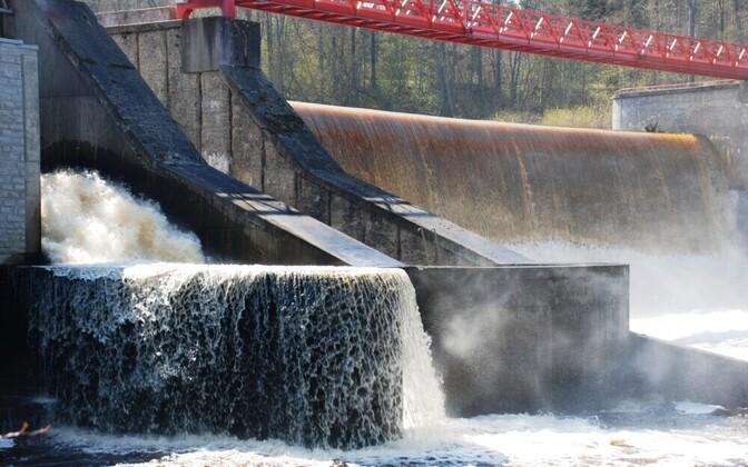 Линнамяэская плотина препятствует нересту рыбы.