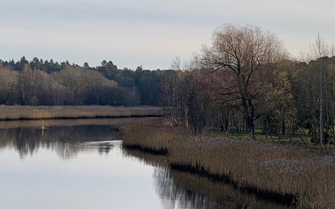 Jõgede puhul tuleb lisaks toiteainetega rikastumisele arvestada ka muu reostuse, kliima soojenemise, vooluhulga muutuse ja setetega.