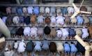 Pakistanis pidasid mõned vajalikuks lugeda varjutuse ajal täiendavaid palvesõnu.