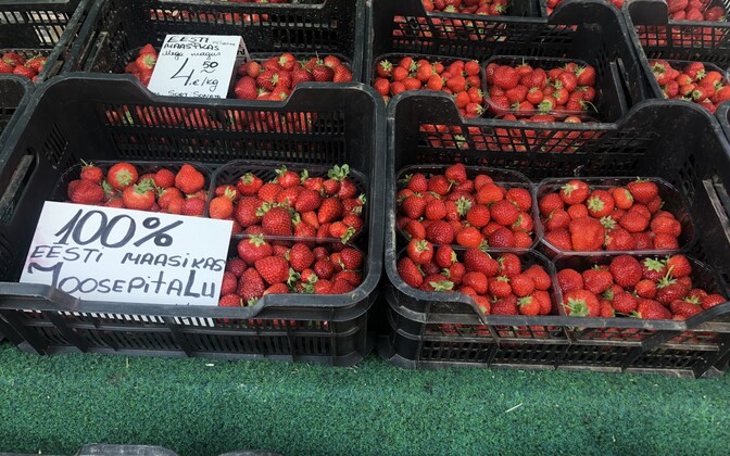 Strawberries for sale in Tallinn's central market; the placard claims the produce is 100 percent Estonian and from the Joosepi farm.