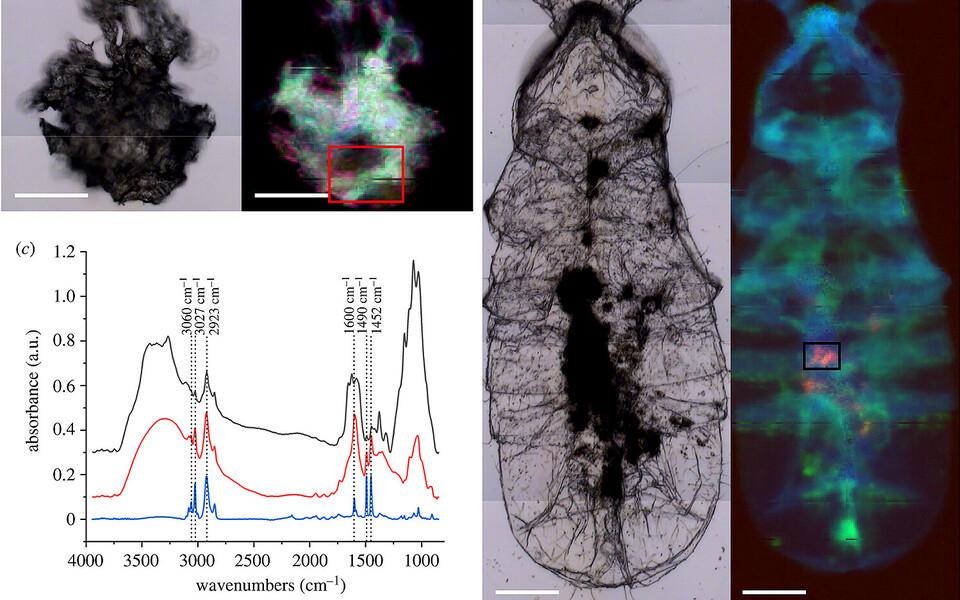 Teadlased kasutasid mikroplasti otsimiseks infrapunaspektromeetrit.