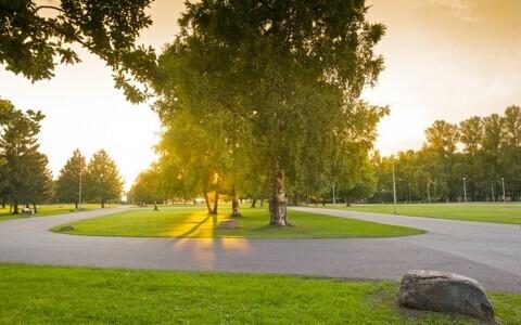 Tallinna lauluväljaku park