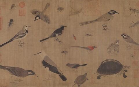 Haruldaste loomade kirjeldus, mille autor on Songi dünastia maalikunstnik Huang Quan.