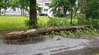 Последствия шторма в Курессааре.