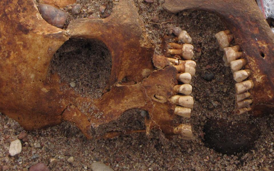 Mees, kelle suust leiti viikingite lauamängu (hnefatafl) kuninganupp.