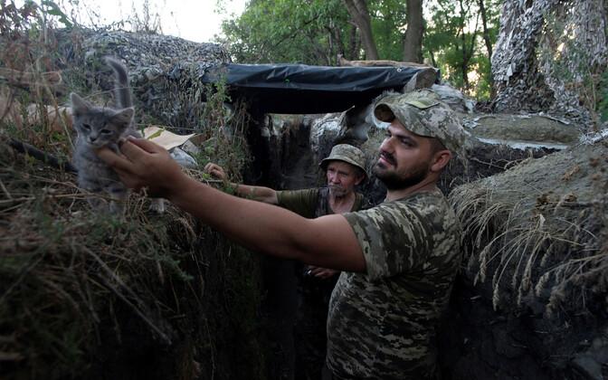 Ukraina sõdurid Luhanski lähedal positsioonil.
