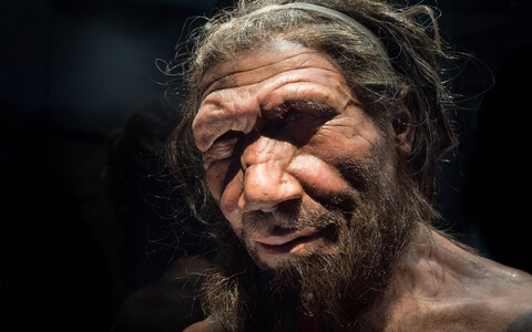 Neandertallastel tekkis valuaisting hõlpsamini kui enamikul tänapäeva inimestel.