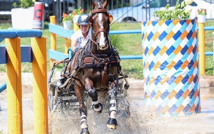 Pille-Riin Roosileht hobusega Donald