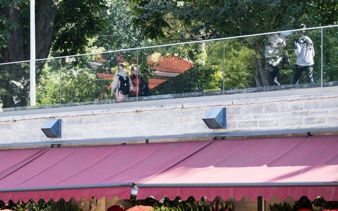 Мусумяги в Таллинне.