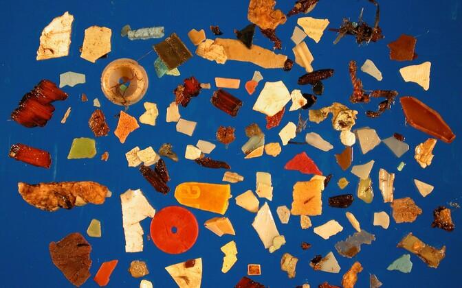 Ühe jää-tormilinnu kõhust leitud plastprügi 2012. aasta oktoobris.