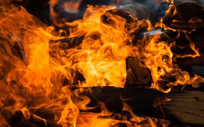На костре можно сжигать только необработанные природные материалы. Иллюстративная фотография.