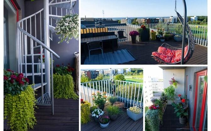 Самый красивый балкон Ласнамяэ по версии жюри конкурса.