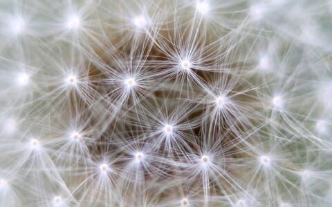 Konkreetse mudeli puhul vaadeldakse närvirakku kui kondensaatorit, mis kogub laengut kuni teatud lävendväärtuseni.