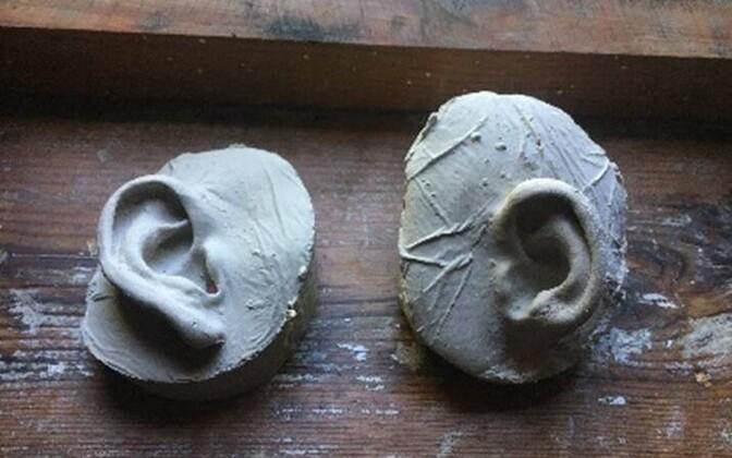 Kalamaja muuseum kutsub Kalamaja elanikke osalema näituse loomisel ja annetama muuseumile oma kõrvade kipsist jäljendeid.
