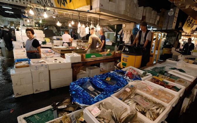 Jaapani kalaturg.
