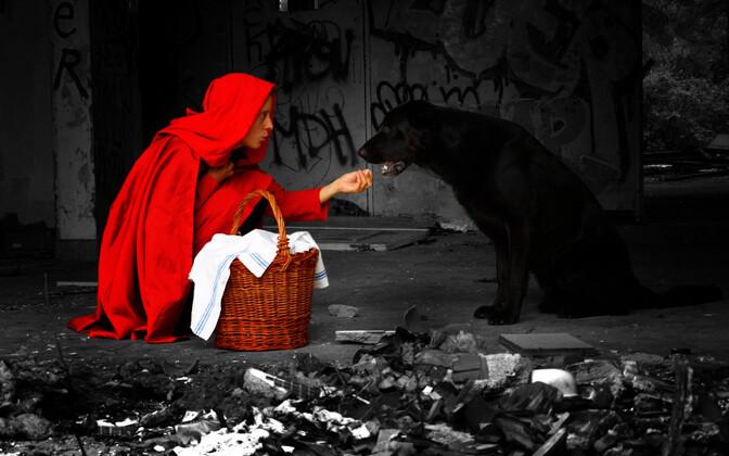 Inimeste viga on usk hundi või intelligentse süsteemi moraalitunnetusse.