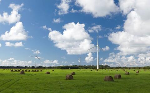 Enefit Green wind turbines.