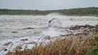 Stormy seas off Saaremaa.