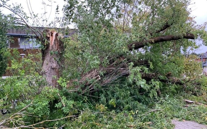 Последствия шторма в Пирита.