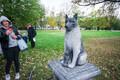 Statue of stray dog Žorik unveiled in Kalamaja.