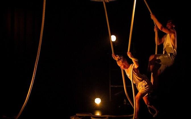 Circus Sabok