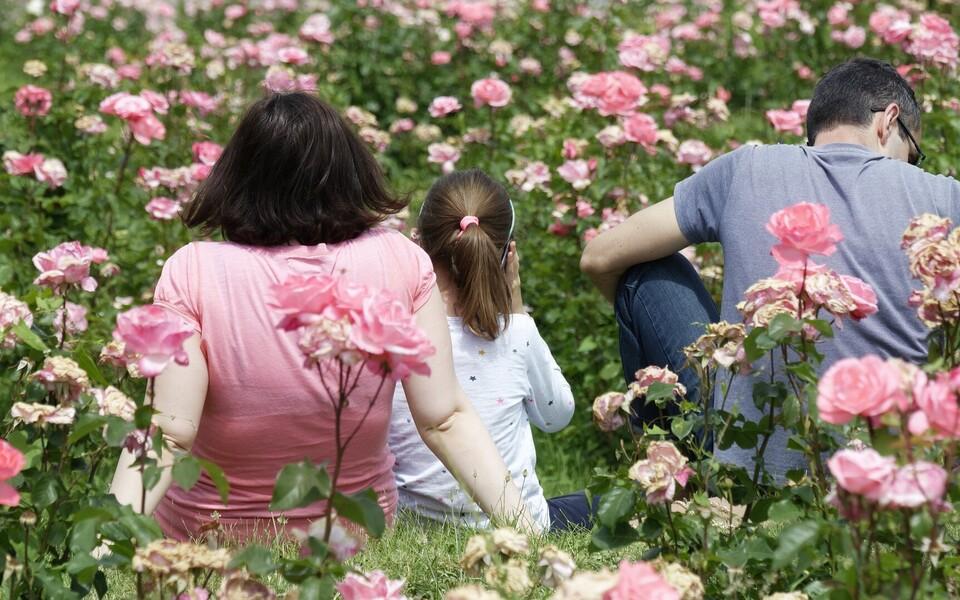 Жителям Эстонии весной предстоит подумать о том, что именно, на их взгляд, является браком. Иллюстративная фотография.