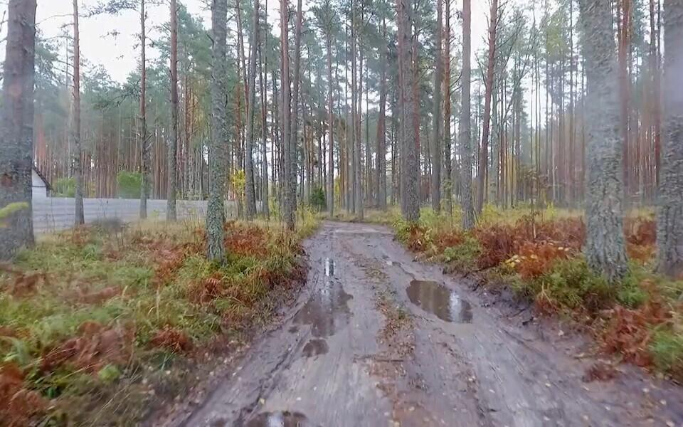 Kaili-Helina Koltsi krundi kõrval olev RMK maale ja Lahemaa rahvuspargi alale rajatud alternatiivne metsatee.
