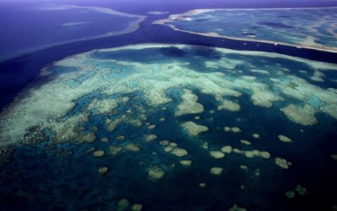 Enam kui 2300 kilomeetri pikkune Suur Vallrahu kanti 1981. aastal maailmapärandi nimistusse.