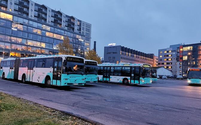 Автобусы. Иллюстративная фотография.
