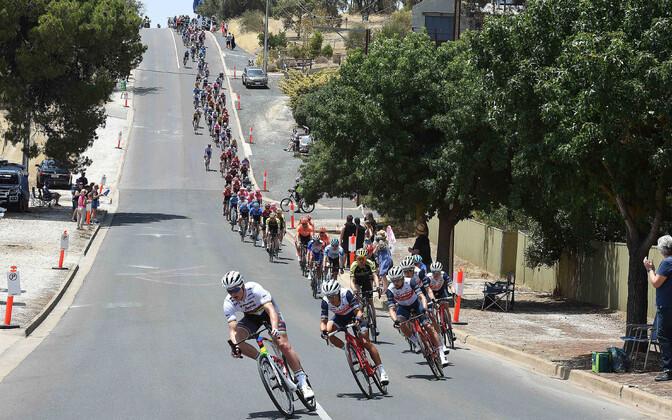 Ratturid Tour Down Underil