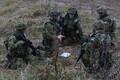 Scoutspataljoni õppus Teraskilp Lätis.